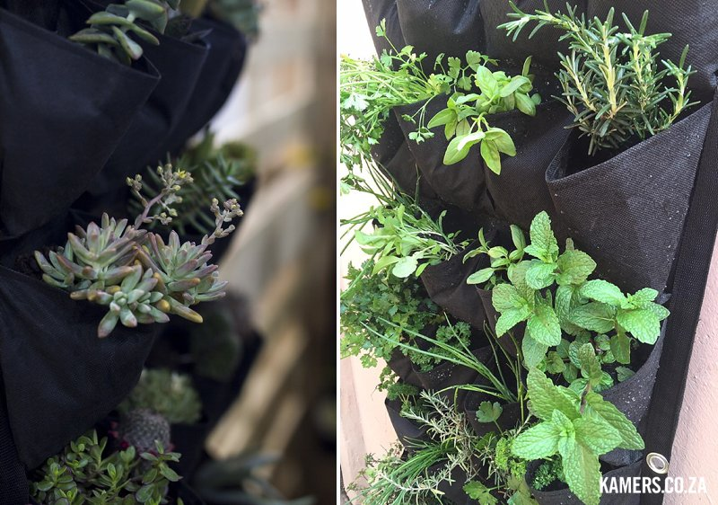 Like Literally hanging wallflower planters at KAMERS/Makers 2016 - www.kamers.co.za