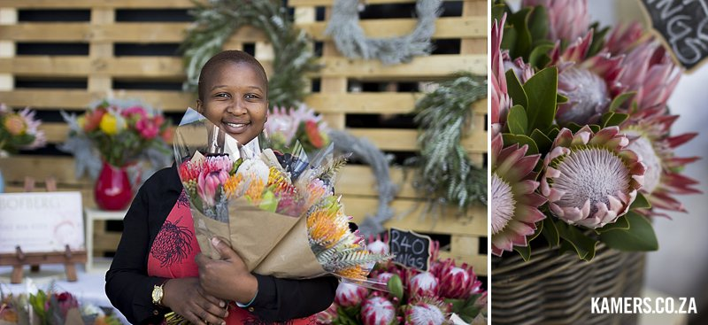 Bofberg Flowers proteas at KAMERS/Makers 2016 - www.kamers.co.za